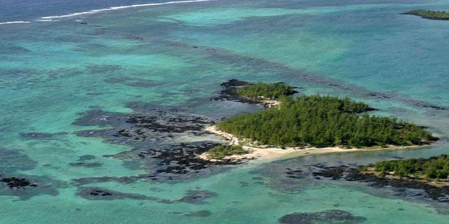 Incendie à l'île d'Ambre, le feu a été rapidement circonscrit