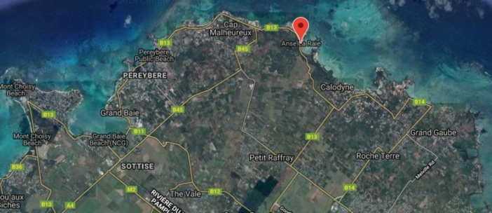 Le projet routier à Anse-la-Raie nécessitera l'abattage d'une centaine d'arbres