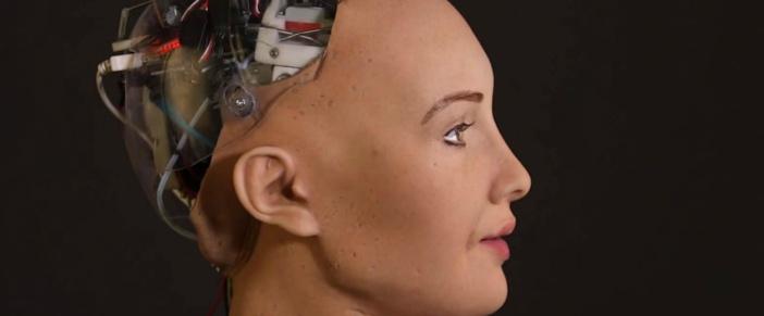 [Dossier] Mini-Terminator ou mystification, le robot Sophia s'invite à Maurice