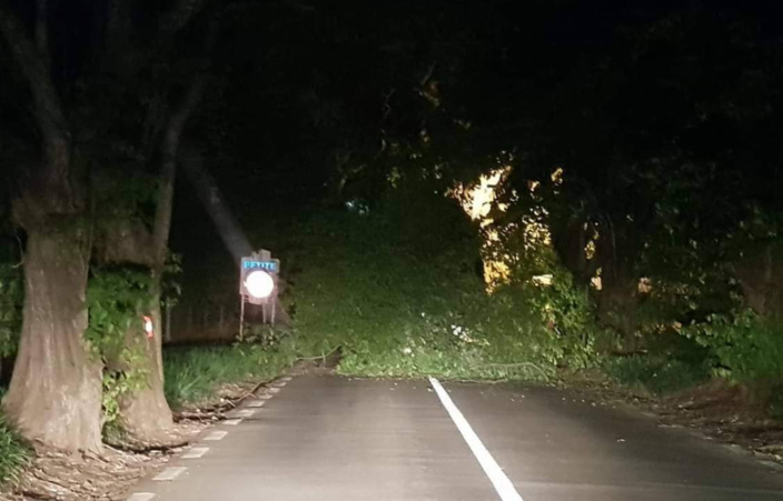 Rivière du Rempart / Petite Julie : Chute d'arbres sur la route