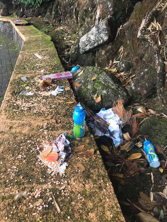 [Diaporama] Ganga Talao (Grand Bassin) noyé sous un amas d'ordures