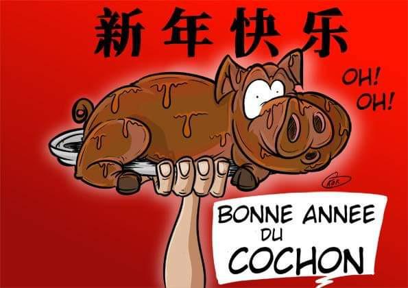 [KOK] Le dessin du jour : L'année du Cochon