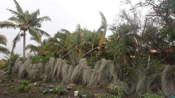 Après le passage du cyclone GELENA.