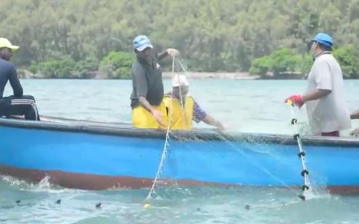 Ouverture de la pêche à la senne : Des règlements à respecter
