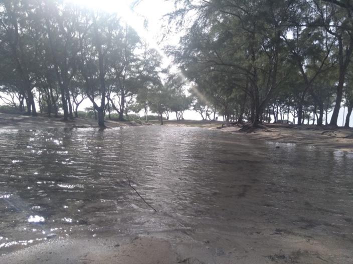 Fortes houles : inondation côtière à Poste Lafayette hier dimanche