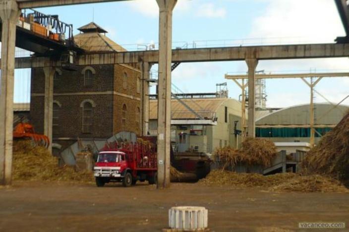 La sucrerie de Medine fermera définitivement ses portes