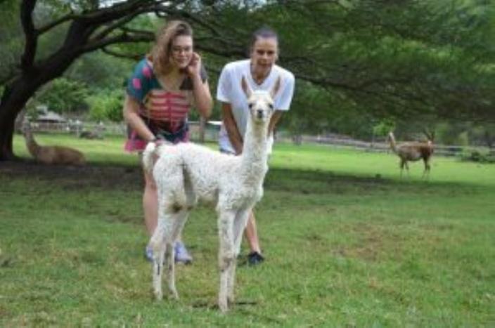 La princesse Stéphanie de Monaco et sa fille à Maurice pour le baptême d'un lama