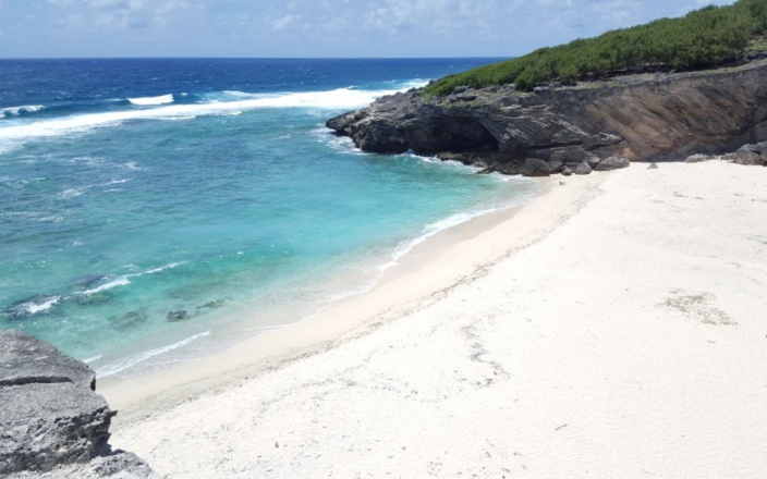 Rodrigues île durable : Après les sacs en plastique, les boîtes à repas en polyéthylène seront prochainement bannis