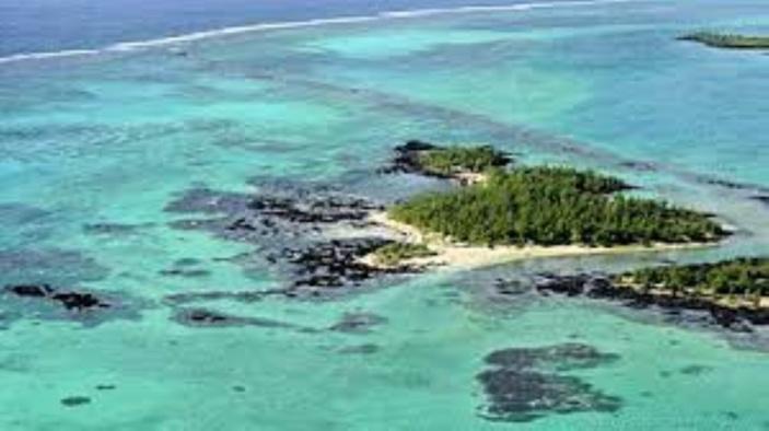 Culture de cannabis sur l'île d'Ambre : Deux pêcheurs arrêtés