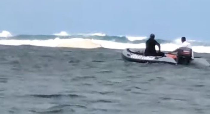 Un cachalot s'échoue dans le lagon de Bel-Ombre : sauvetage en cours