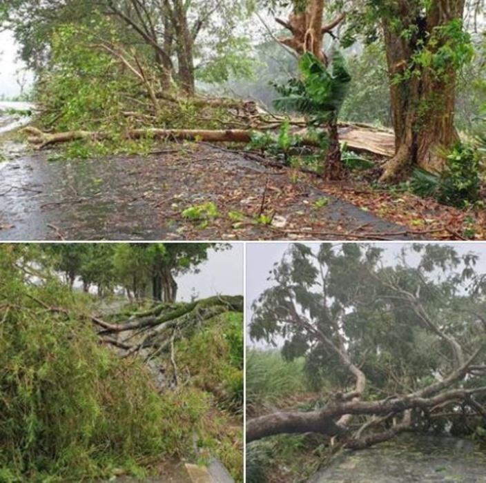 Forte tempête Calvinia : 3 350 foyers privés d'électricité et 335 personnes dans les centres de refuge