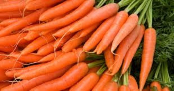 Conséquences des intempéries : Importation de la carotte, chou et haricots