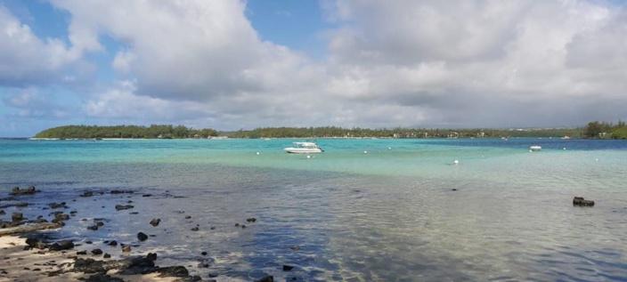 Le parc marin de Blue Bay face à une catastrophe écologique