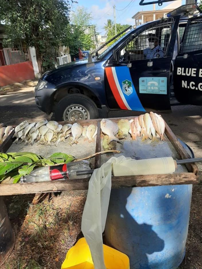 Plaine-Magnien : un homme arrêté pour la vente de pêche illégale