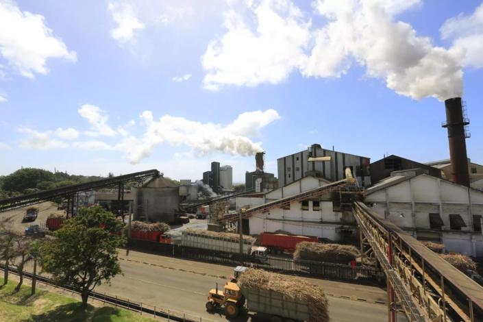 Alteo, le principal producteur de sucre annonce la fermeture prochaine de sa raffinerie