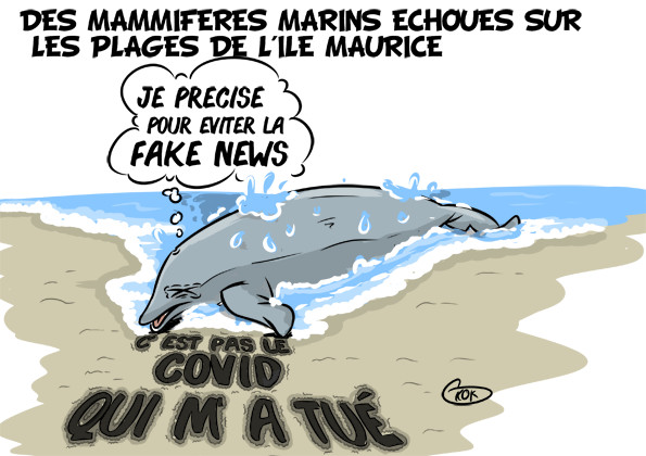 [KOK] Le dessin du jour : Des mammifères marins échoués sur les plages de l'île Maurice
