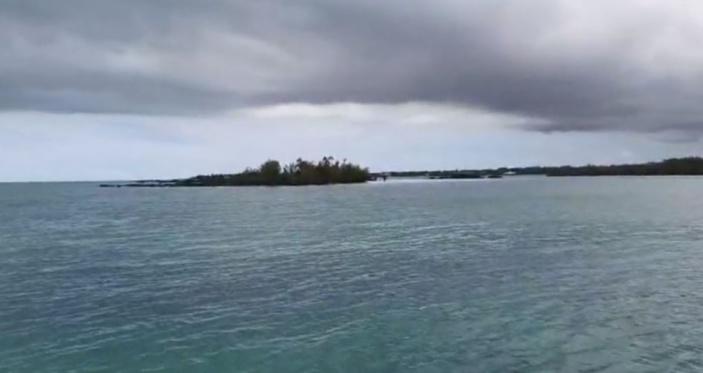 Tentative de propagande du gouvernement : le fioul aperçu dans la mer est un acte criminel selon un conseiller