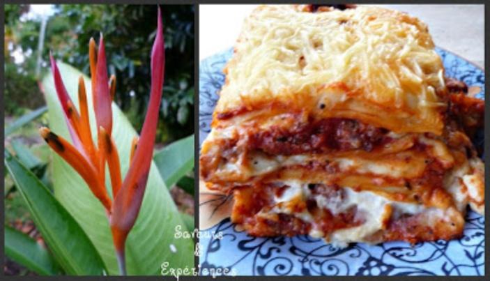 La recette d'Emmanuelle : Lasagnes de la Nonna