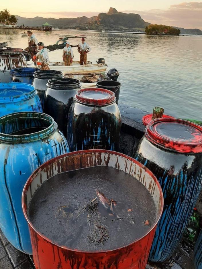 Catastrophe écologique : L'aide de Mitsui OSK Lines s'élève à 8 millions d'euros