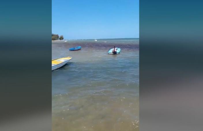 Au Morne, déversement d'huile observé dans le lagon