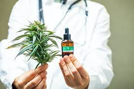 [Dossier] Légalisation du cannabis à usage thérapeutique à l'île Maurice, bientôt une réalité ?