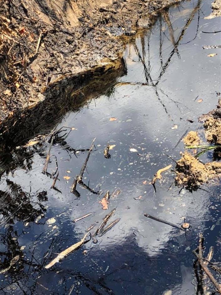 [Photos] Catastrophe écologique à Les Salines: plus de 24 heures après l'alerte, les autorités absentes