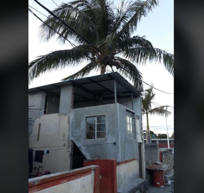 A Cité Vallajee, construction d'une maison en protégeant un cocotier