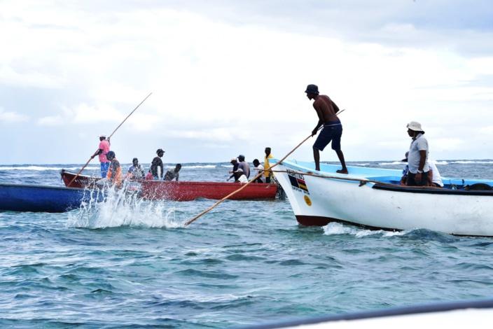 Ouverture de la saison de pêche à la senne 2021 à l'île Maurice