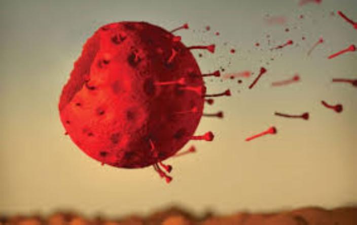 Covid-19 : 5 nouveaux cas positifs dans la zone rouge de Camp Diable