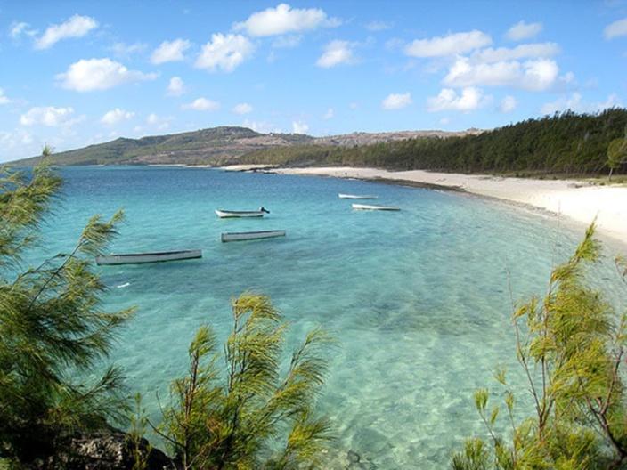 Rodrigues : les partis politiques sur la ligne de départ