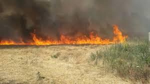Incendie à Flic-en-Flac, 30 hectares à la proie des flammes maîtrisés