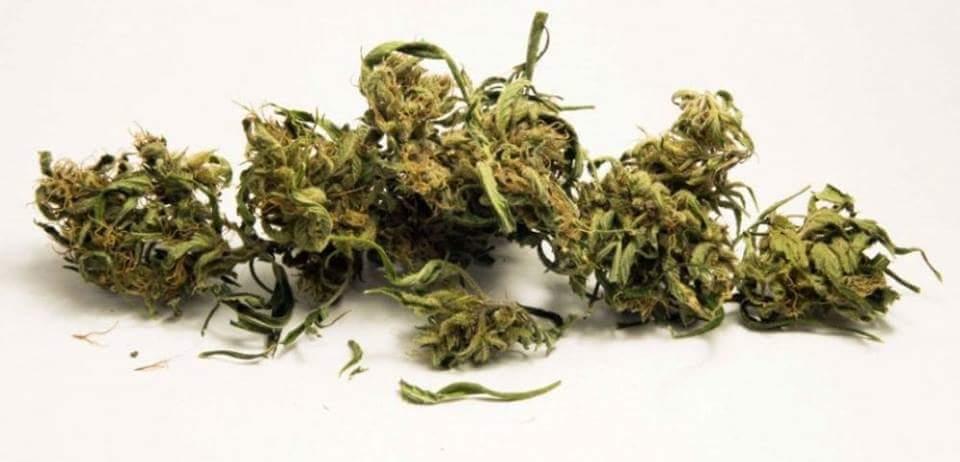 Plaisance : Un Réunionnais arrêté avec de la drogue à l'aéroport SSR hier