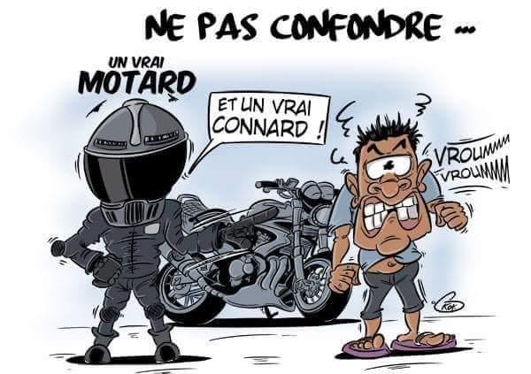 [KOK] Le dessin du jour : Ne pas confondre un motard et un connard !
