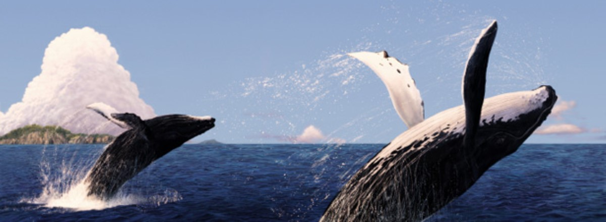 Projet d'accord de pêche dans les eaux mauriciennes, La Réunion se dit concernée