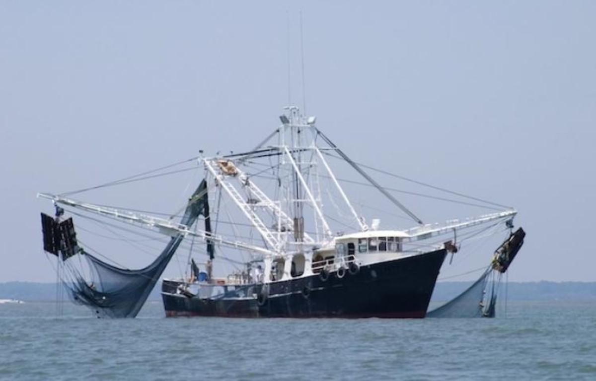 Accord de pêche Japon-Maurice : Le Conseil des ministre noie le poisson !