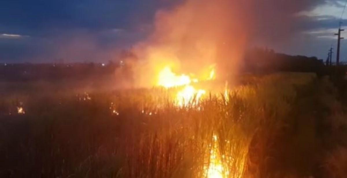 Autoroute de  Forbach : Incendie dans un champ de canne