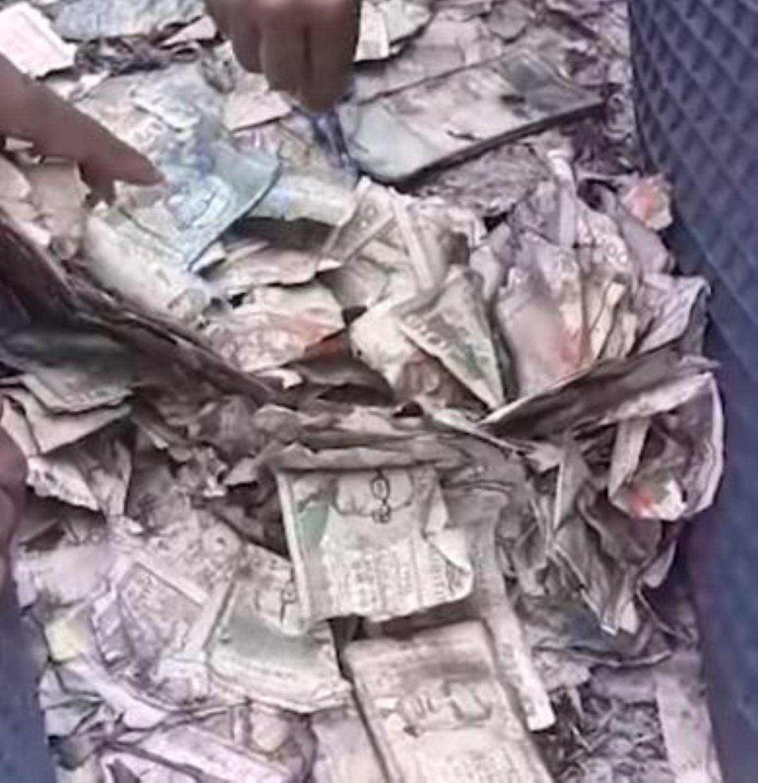 Daruty : Rs 500,000 retrouvées dans un champ de canne à moitié calcinées