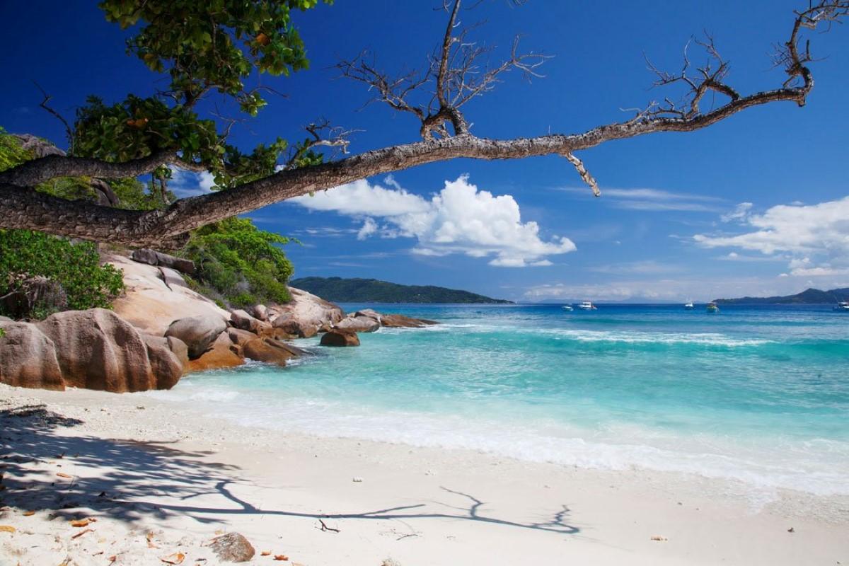 Seychelles : Un guide au programme scolaire sur le réchauffement climatique