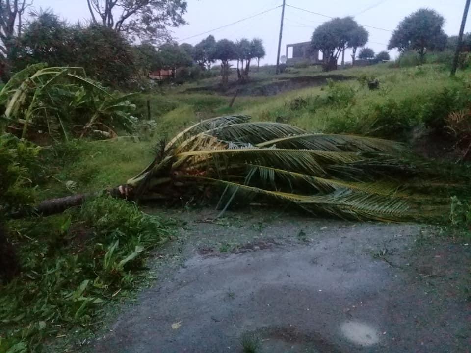 [Diaporama] Le cyclone intense GELENA ravage Rodrigues avec des rafales de 165 km/h