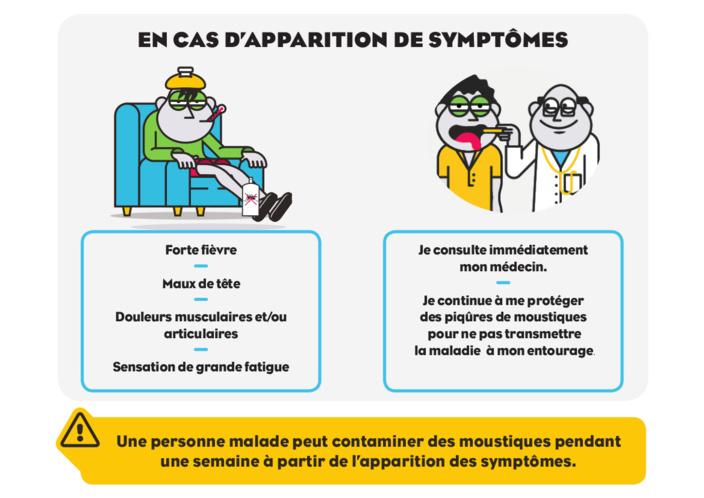 Epidémie de dengue : 7ème cas enregistrés