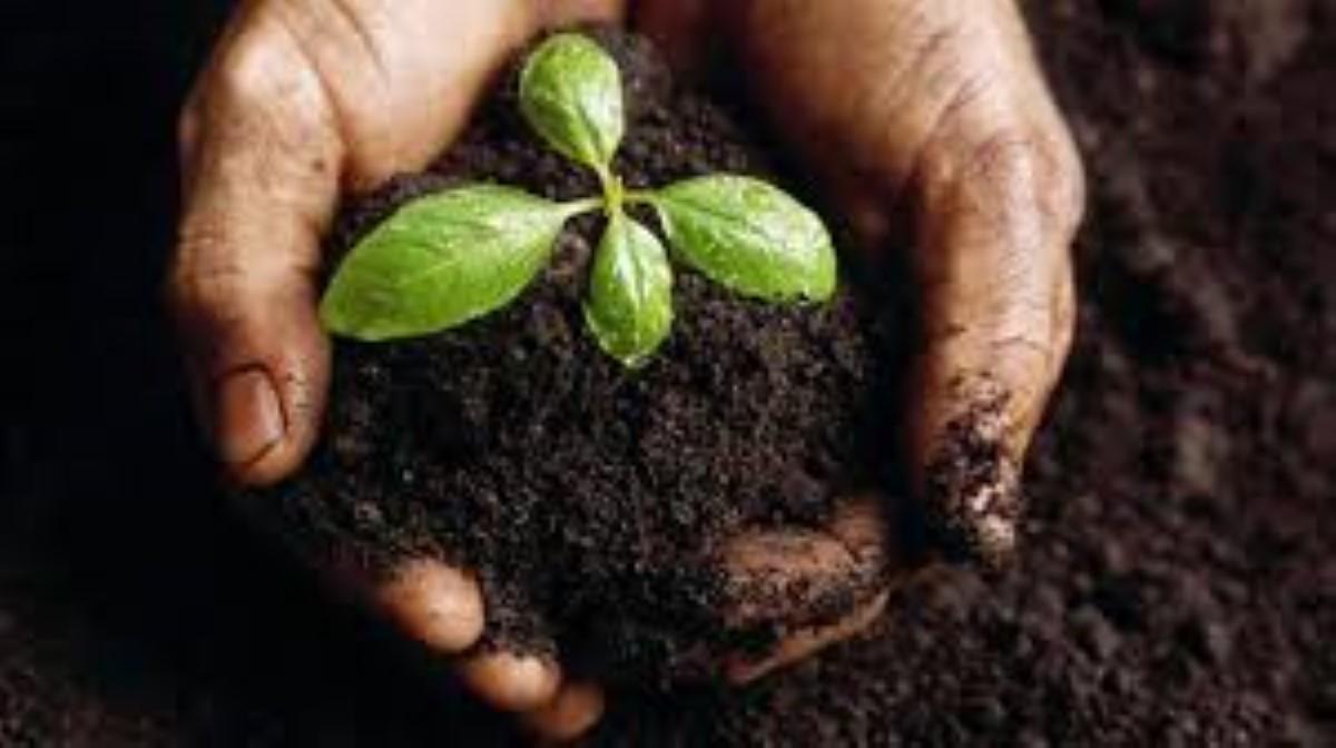 Un stock de compostage d'une valeur de Rs 10.91 millions disponible