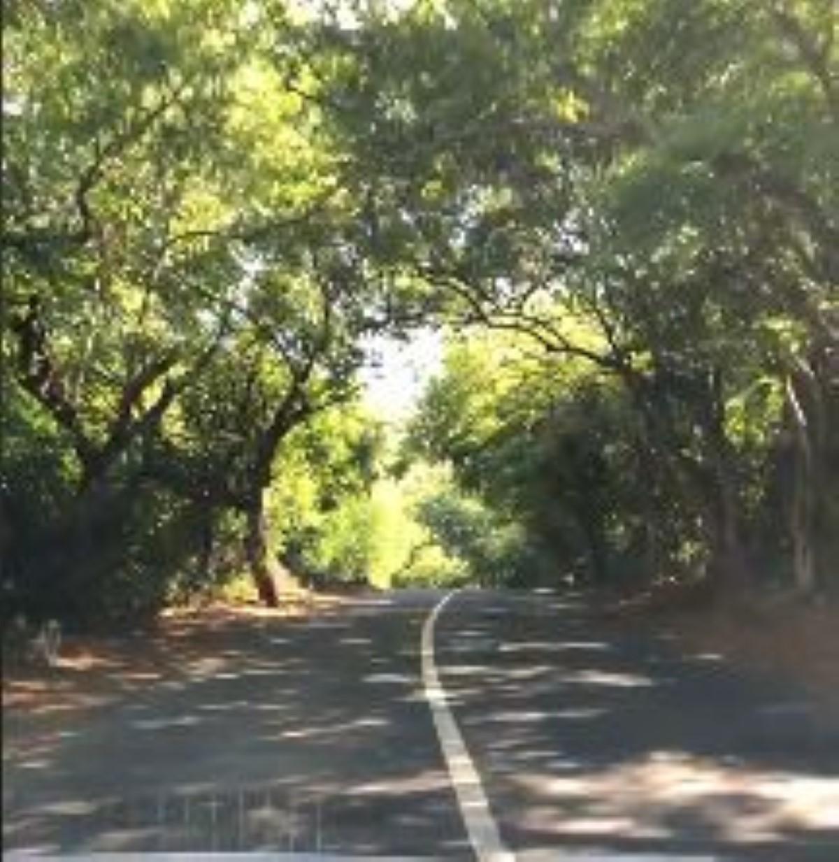 """[Vidéo] Le """"by-pass"""" reliant Cap Malheureux-Anse la Raie : Une hérésie !"""