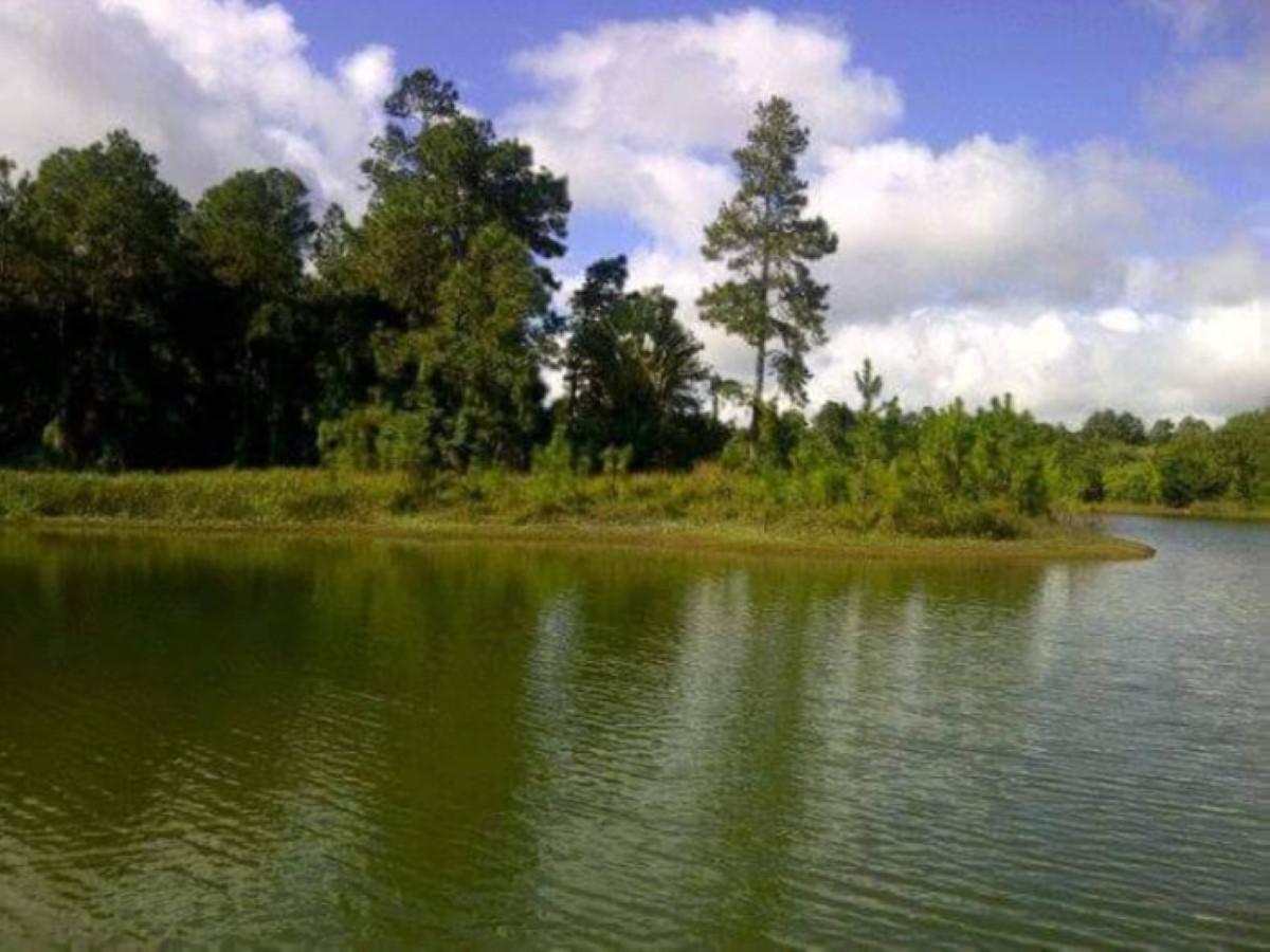 Noyade au bassin de Plaine-des-Hermitages : Le corps d'un homme repêché