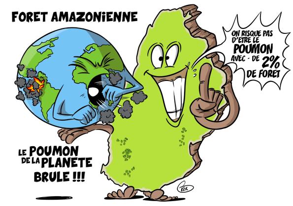 L'actualité vu par KOK : Forêt Amazonienne : Le poumon de la planète brûle !