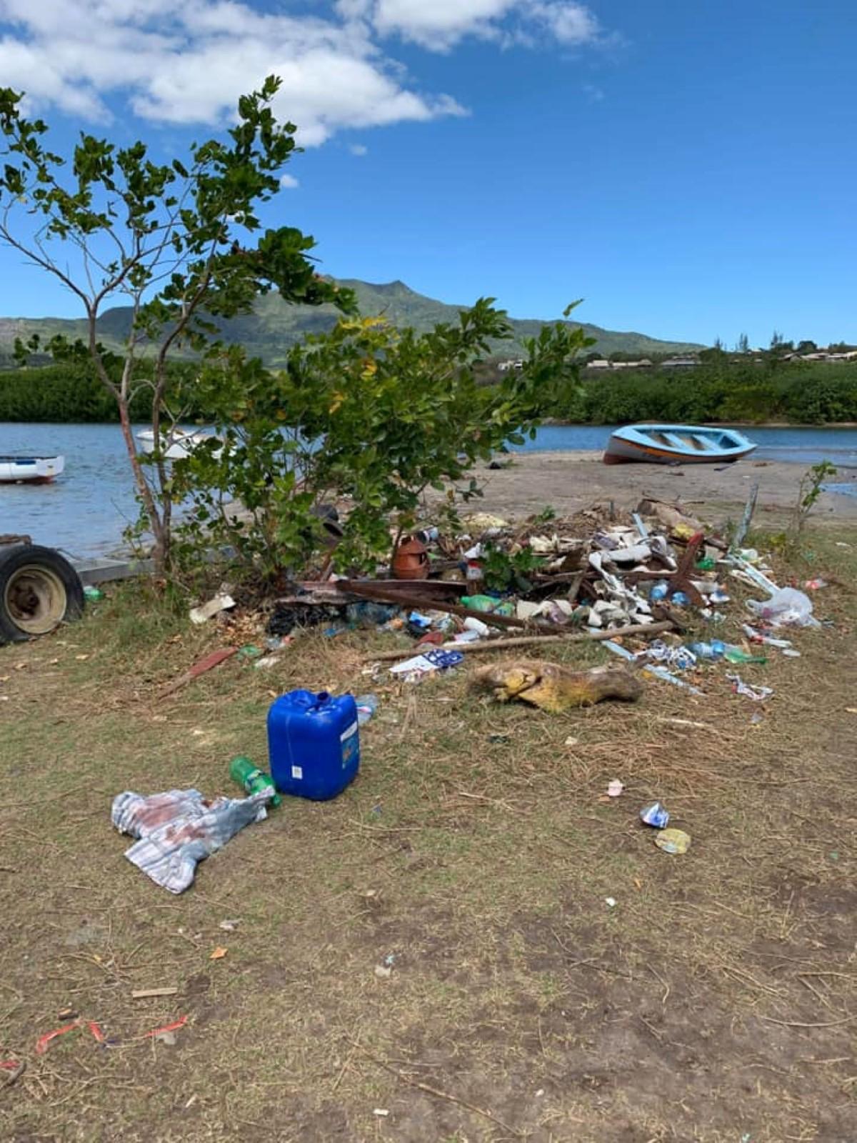@ Ocean Island Cleanup