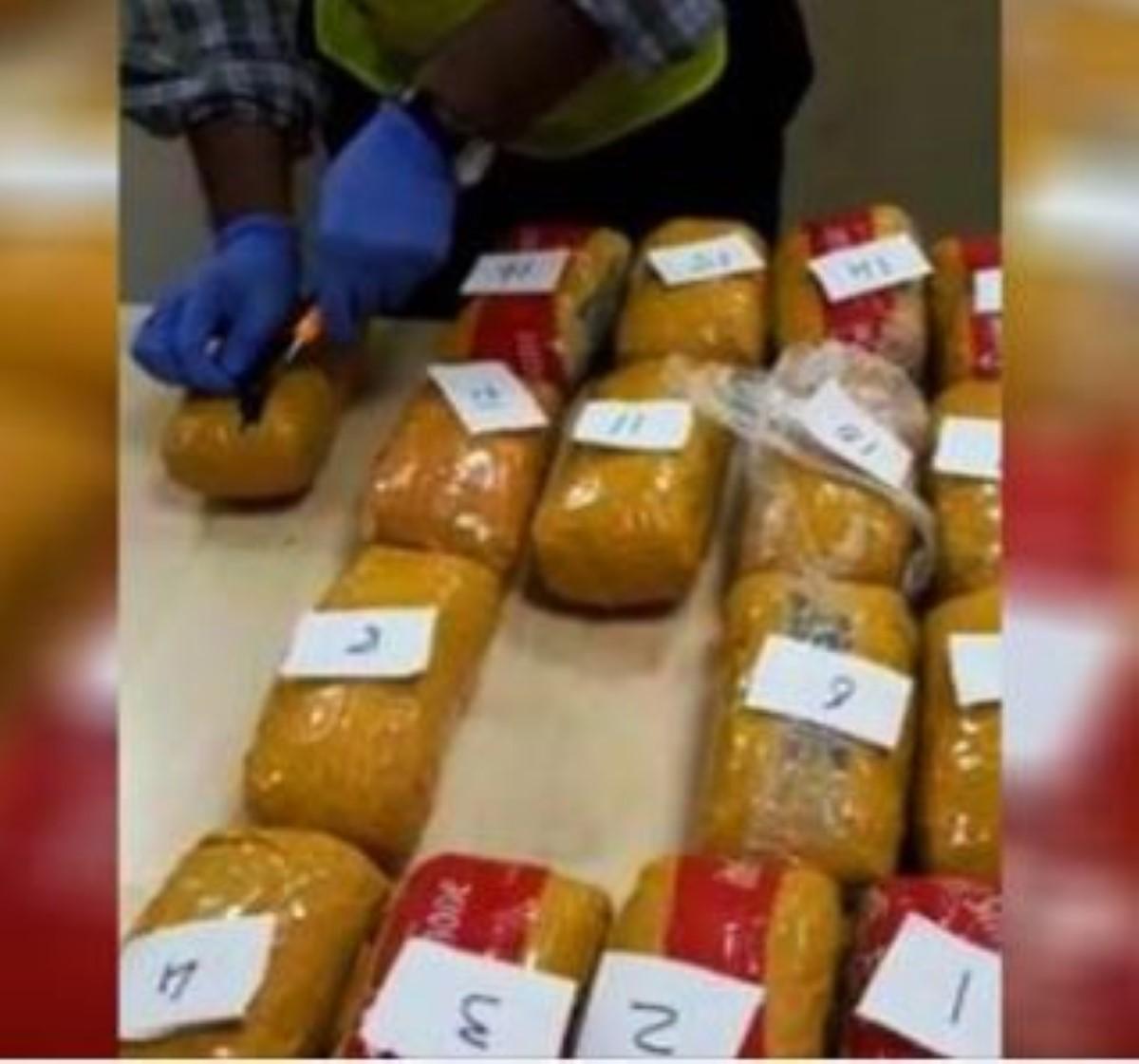 Plaisance: Un Béninois arrêté à l'aéroport avec 5 kilos de cannabis d'une valeur d'environ Rs 3,1 millions