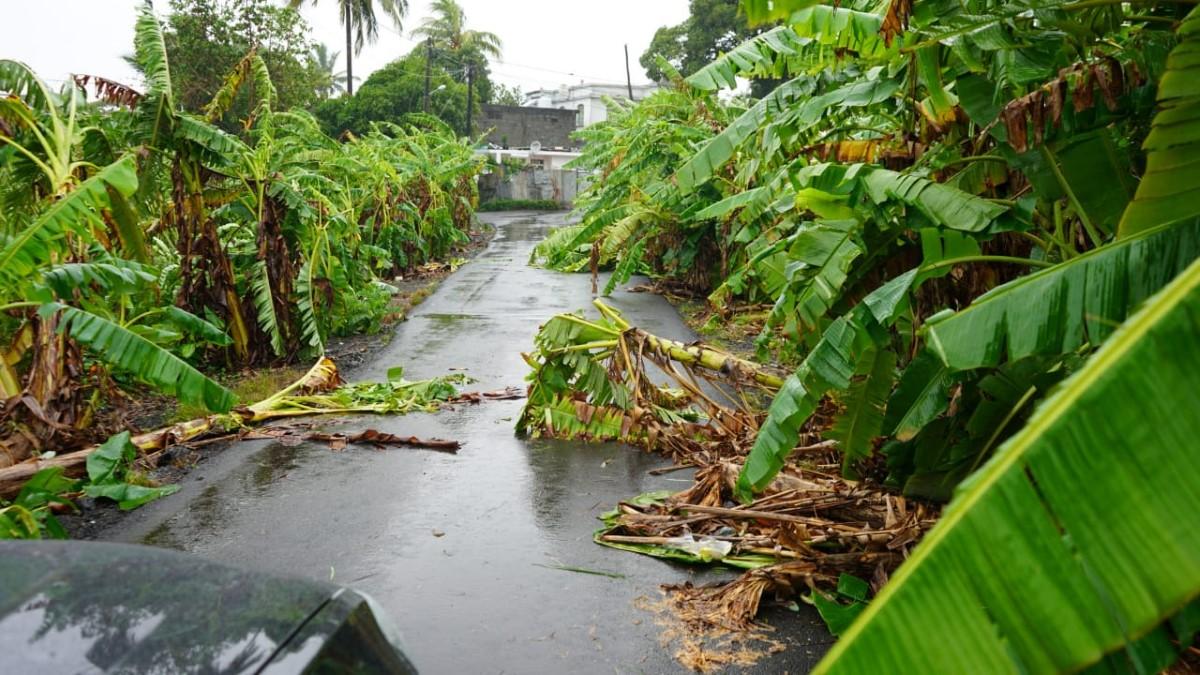 Forte tempête Calvinia : L'île paralysée depuis 24 heures