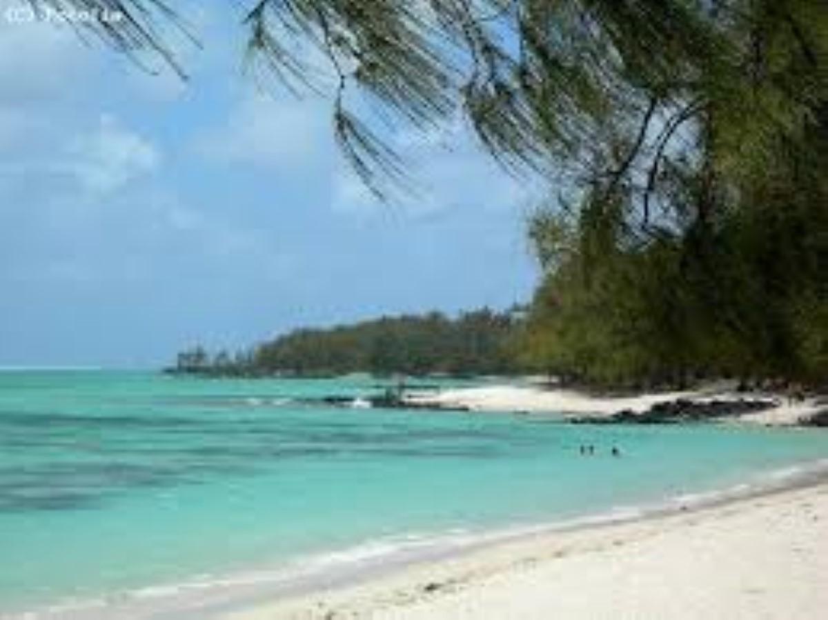 Moody's prévoit une baisse de 30% des arrivées touristiques