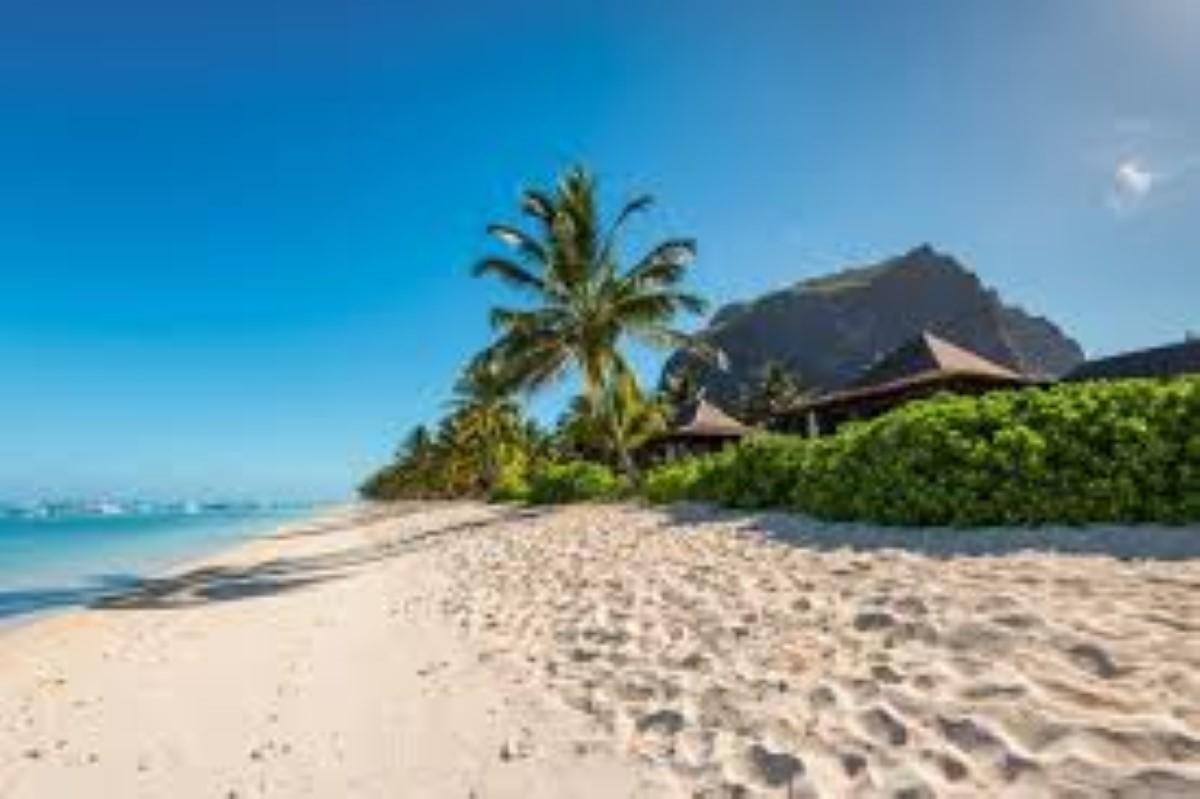 """La Tourism Authority lance le projet """"Sus-Island Mauritius"""", qui devient rapidement la risée des internautes"""