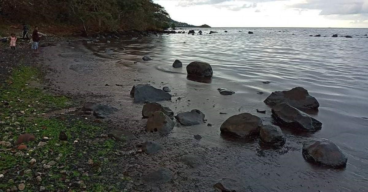 Catastrophe écologique : Marée noire à Rivière Des Créoles